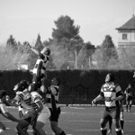 Lineout2